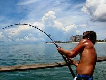 Tampa,s suncoast tarpon roundup at reddington long peir tarpon fishing tampa bay